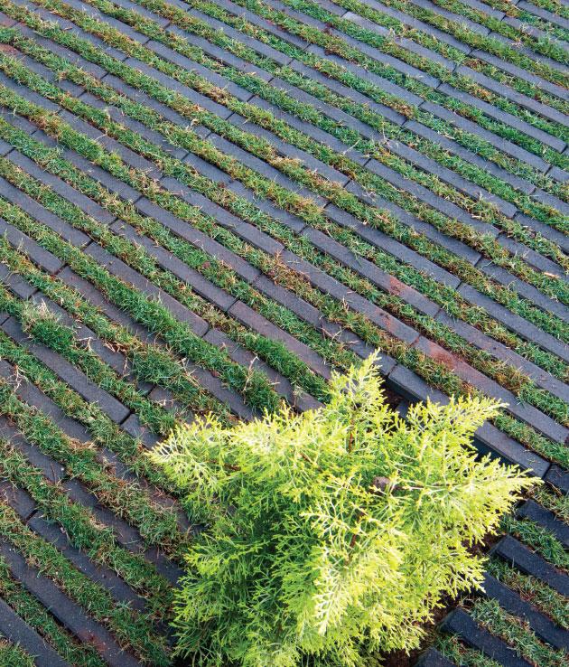Artline Grass Paver